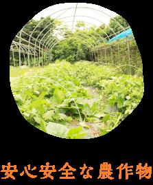 安心安全な農作物